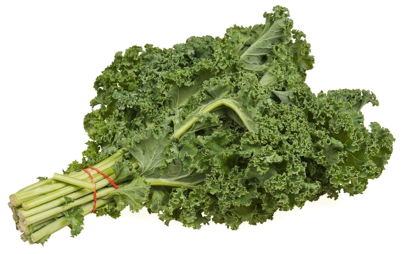 alimentos saudáveis