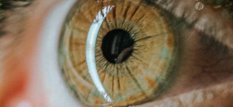 íris do olho