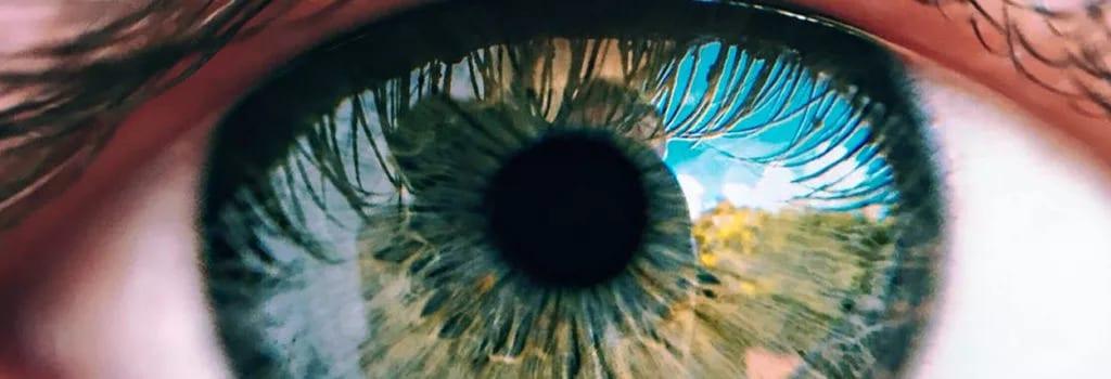 Você pode sofrer com perda de visão? Descubra aqui os sinais
